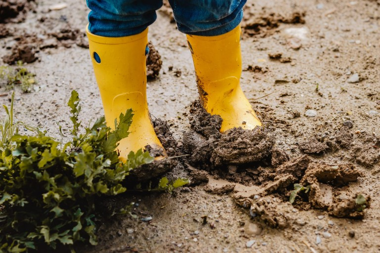 Child legs in yellow muddy rubber boots on wet mud.  Baby playing with dirt at rainy weather. Gardening at spring, weather concept