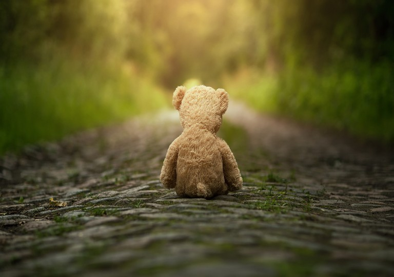 Lonely-Teddy-Bear-On-The-Road-1