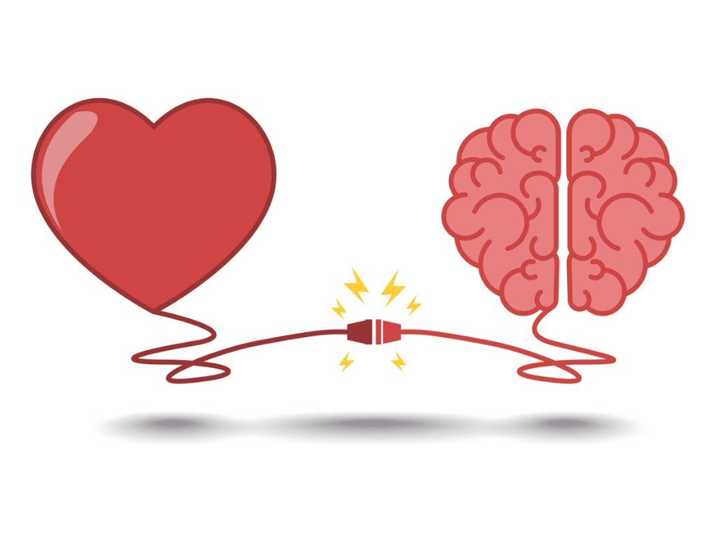 brain-and-heart-interactions-concept-best-teamwork-vector-id536652254